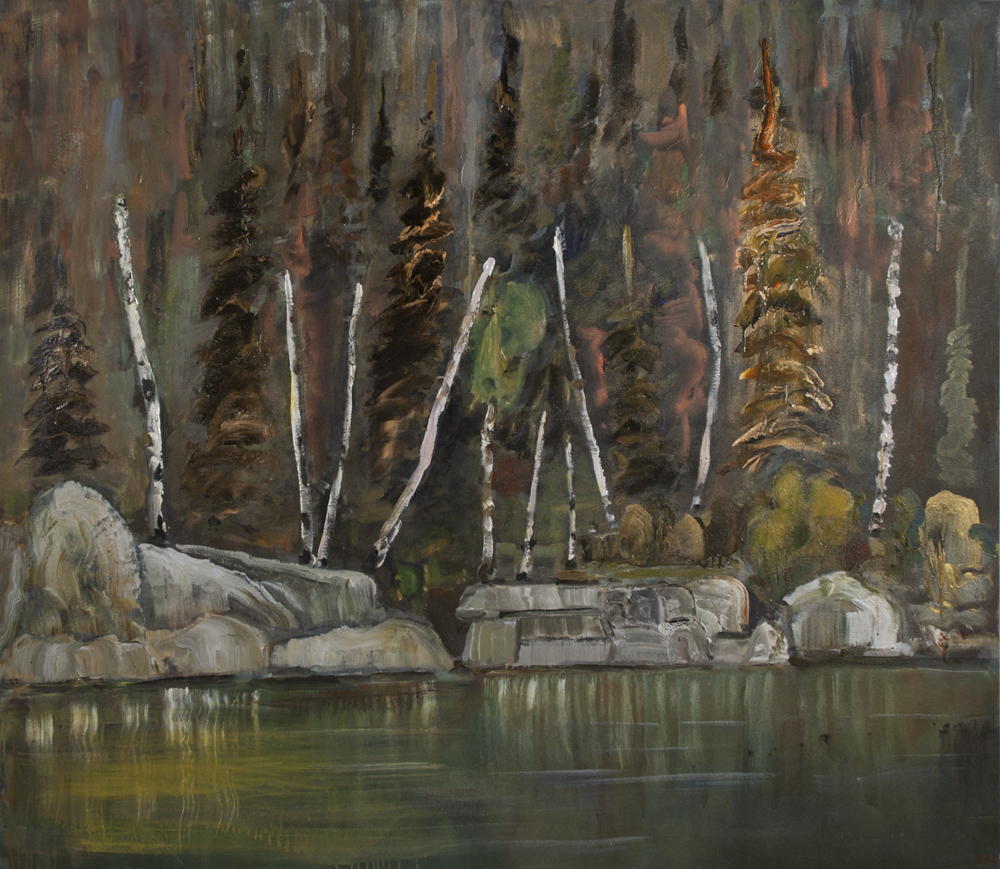 Dark-Forest-with-Birches-2010-11