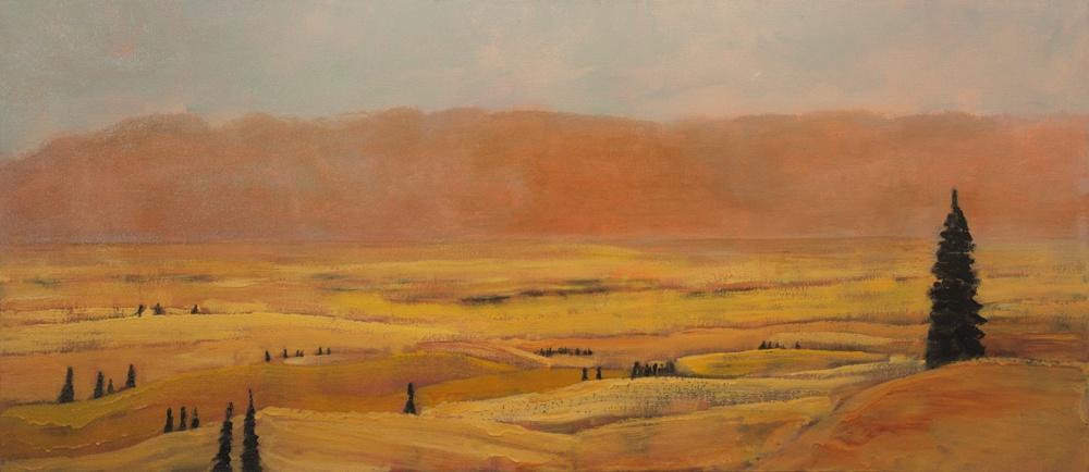 Dust-Storm-2008-2010-30-x-60-acrylic-canvas1