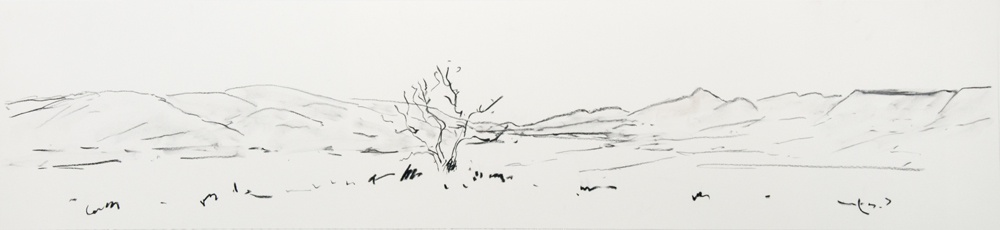 Lone-Tree-2010-15-x-48-Charcoal-paper
