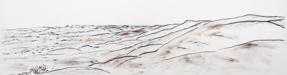 Walking-Hills-2010-17-x-46-Charcoal-pastel-paper