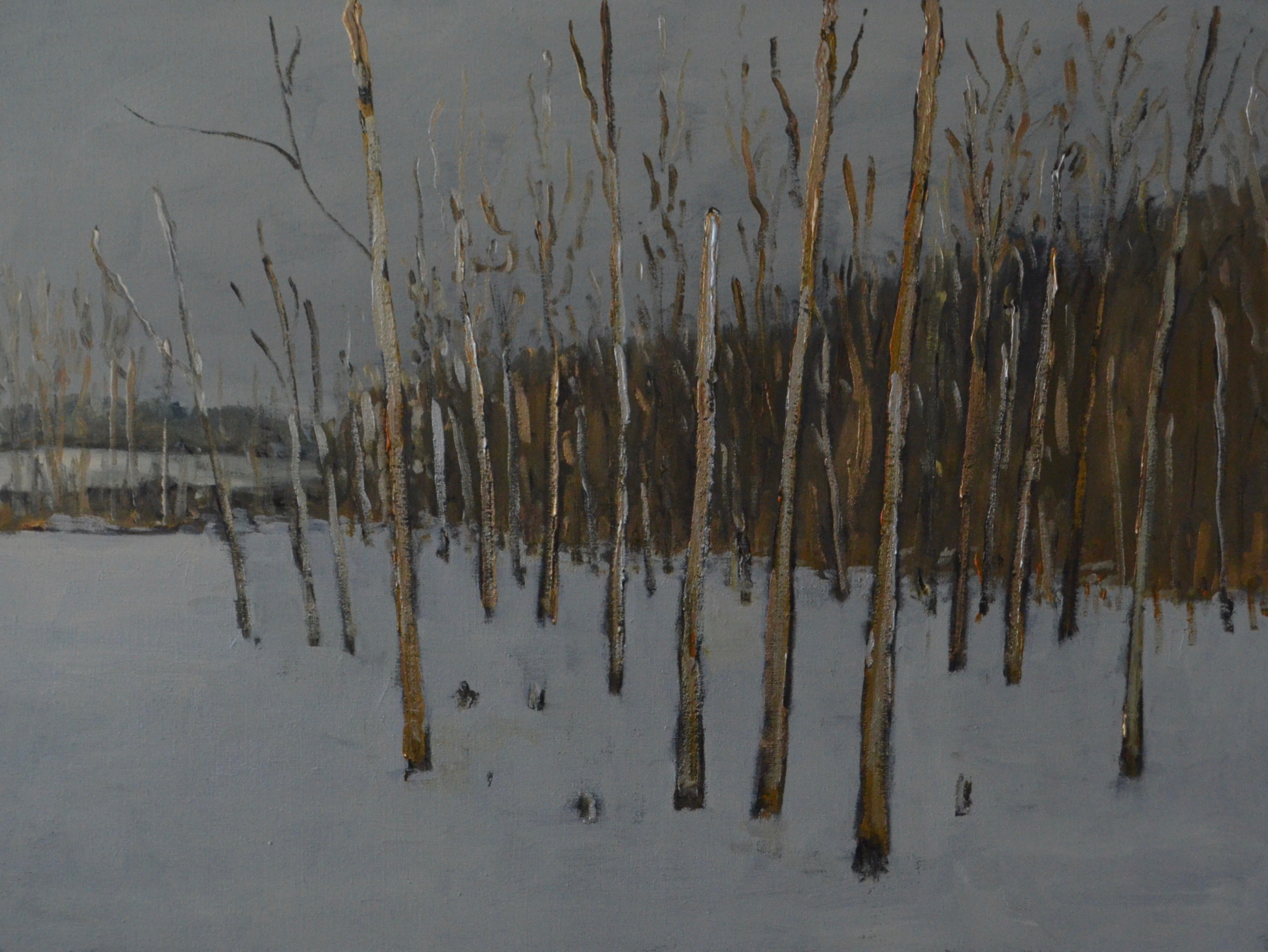 Winter Pond and Trees 2017 acrylic on linen 22_ x 30_